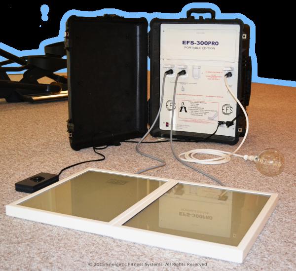 EFS-300PRO Portable