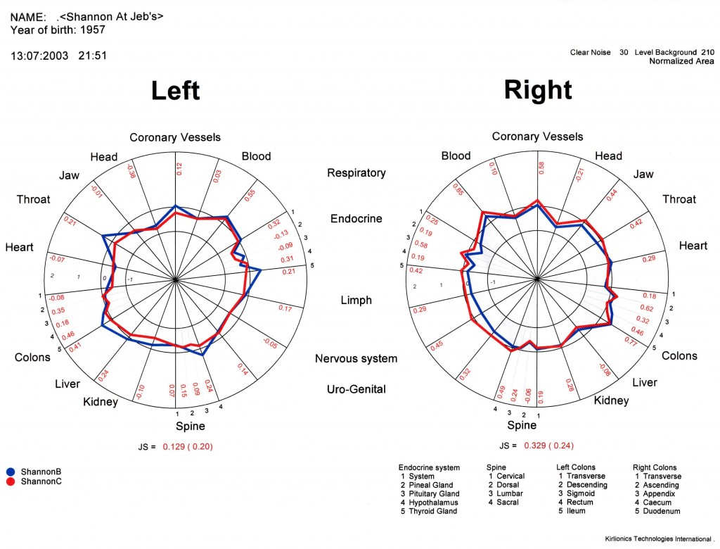 Shannon's GDV Chart Comparison